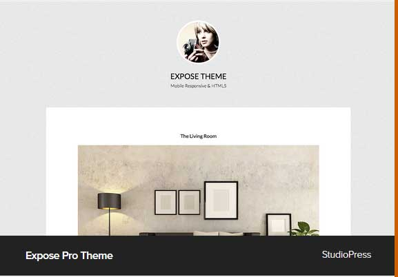 Expose Pro Theme Award Winning Pro Themes for Wordpress Blog : Award Winning Blog
