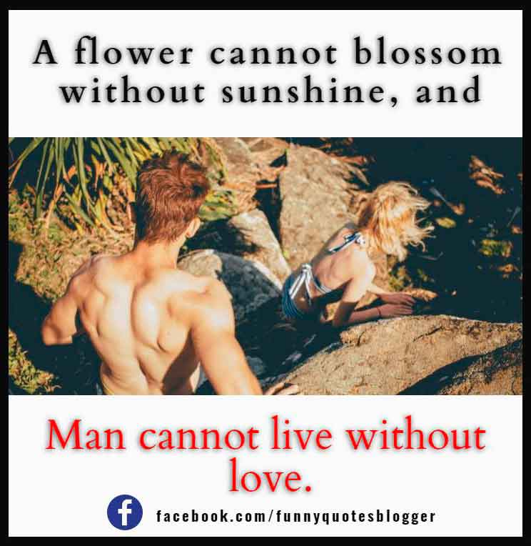 A flower cannot blossom without sunshine, and man cannot live without love.― Max Muller