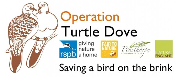 Operation Turtle Dove