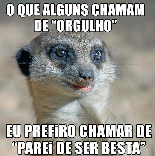 orgulho.png (615×617)