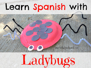 Learn Spanish with Ladybugs // Prepositions