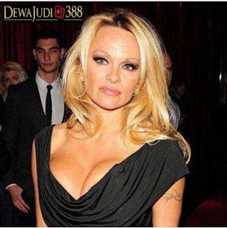 1.Pamela Denise Anderson alias Pamela Anderson