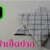 พับผ้า เช็ดปาก ผ้ากันเปื้อน แบบที่ 29 | DIY Knight