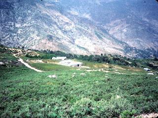 Plantation de Haschisch au Maroc