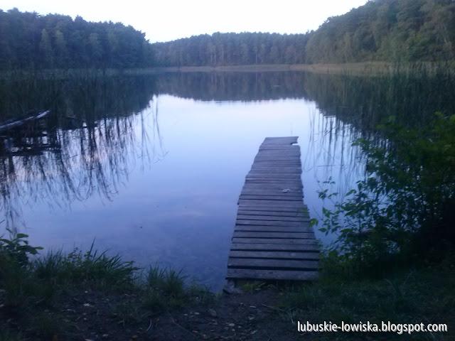 Jezioro Niemka Mała (Cichce, Leśne)