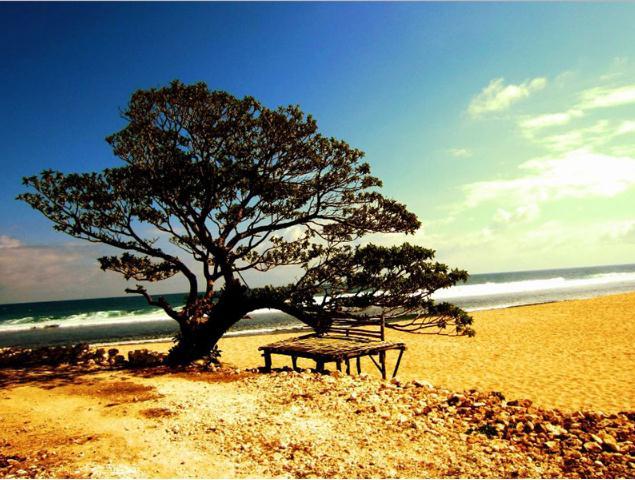 wisata pantai pok tunggal jogja, pantai pok tunggal, wisata jogja, wisata pantai di jogja