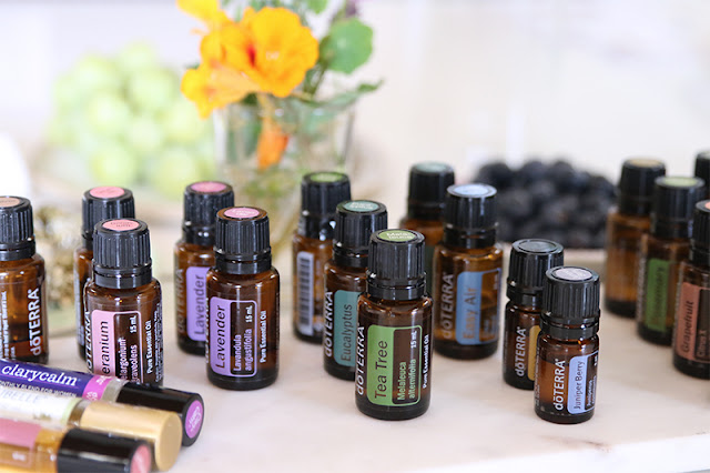 Doterra Wellness Advocate Brisbane Susan King My Wholefood Family work with me