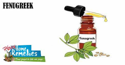 Top 10 Foods That Help You Smell Nice: Fenugreek