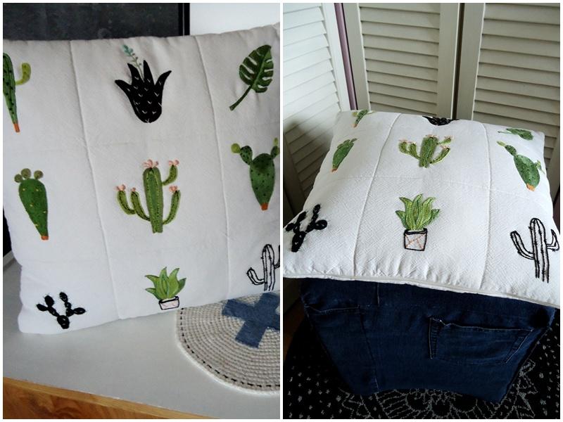 trochę Meksyku, kaktusy