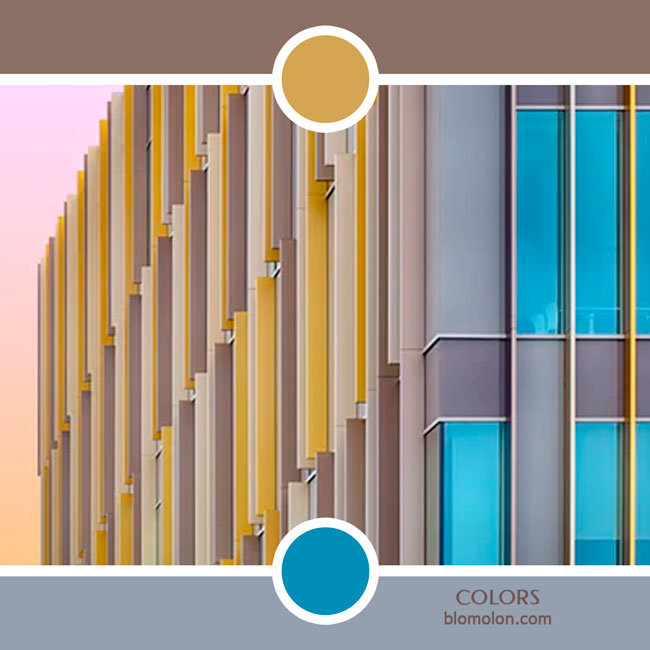 variedad_en_color_color_84