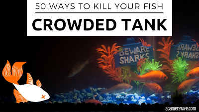 50 Ways to Kill Your Fish - Crowded Tank