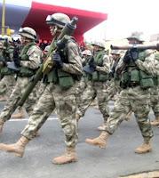 Imagen de la Fuerza Armada del Perú en pleno desfile peruano