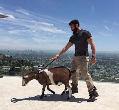 Dan Bilzerian Pet Goat