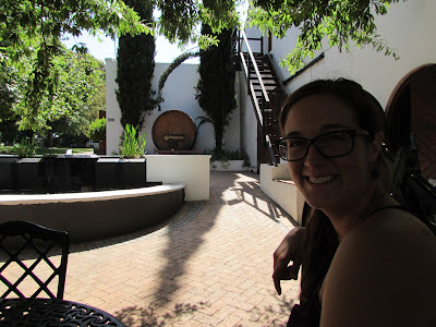 Entry Two: Stellennbosch and Cape Town