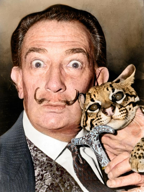 foto Salvador Dali with ocelot and cane photographed in 1965