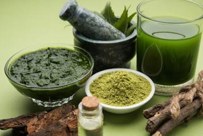 Utilisation de la plante Neem pour le traitement du cancer de la prostate