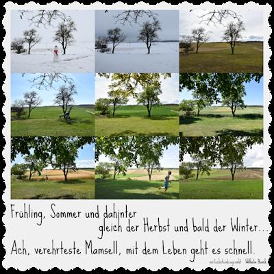 Frühling, Sommer und dahinter gleich der Herbst und bald der Winter... Ach verehrteste Mamsell, mit dem Leben geht es schnell.