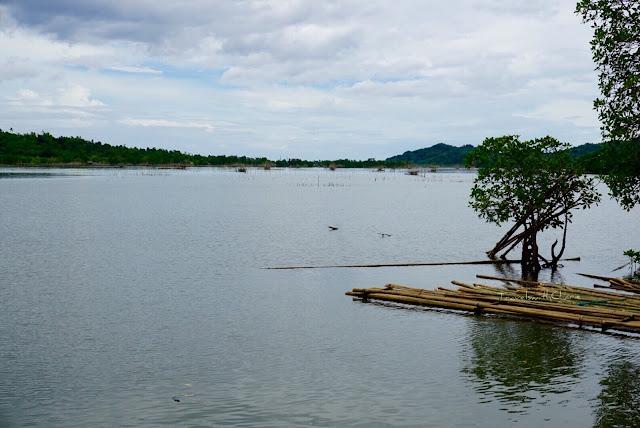Tinago lake, Batan, Aklan
