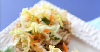 Slow Cooker from Scratch®: Slow Cooker Hoisin Shredded ...