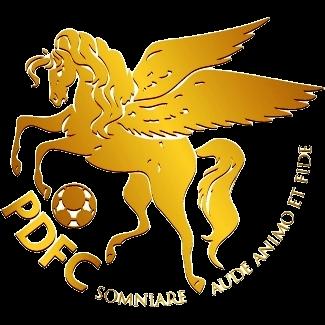 Daftar Lengkap Skuad Nomor Punggung Kewarganegaraan Nama Pemain Klub Pro Duta FC Terbaru 2017