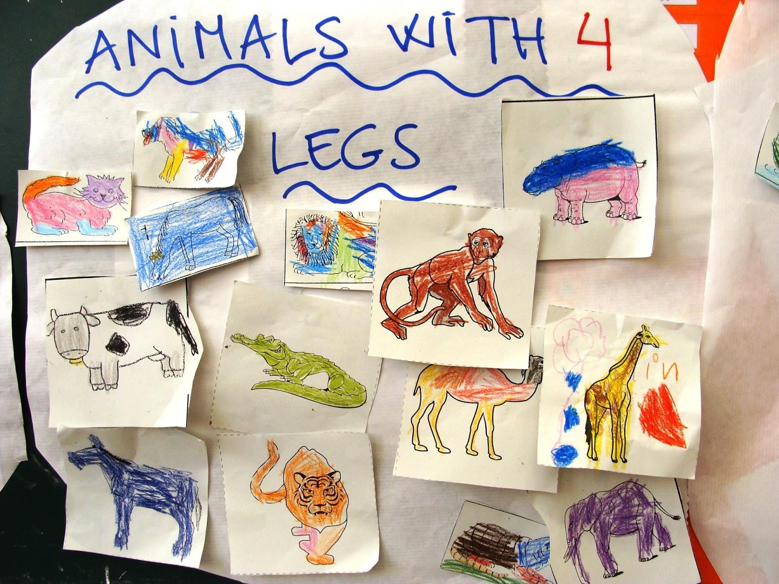 ENGLISH BLOG: CLASSIFYING ANIMALS