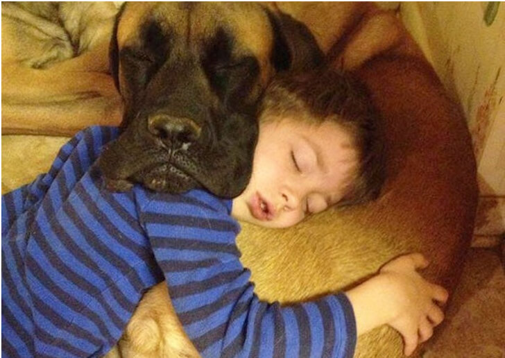 28 Hilarious Pictures Of Animals Imitating Their Humans Perfectly