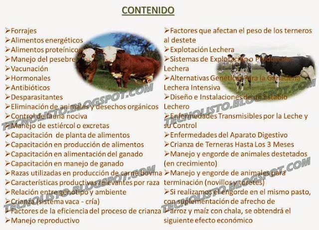 """Manual cria de ganado vacuno"""""""