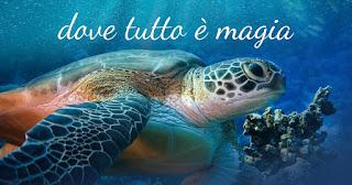 Offerte Acquario di Livorno 2018