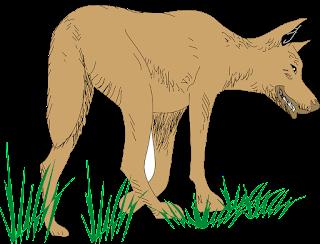 قصص قصيرة | قصة الذئب والغزال
