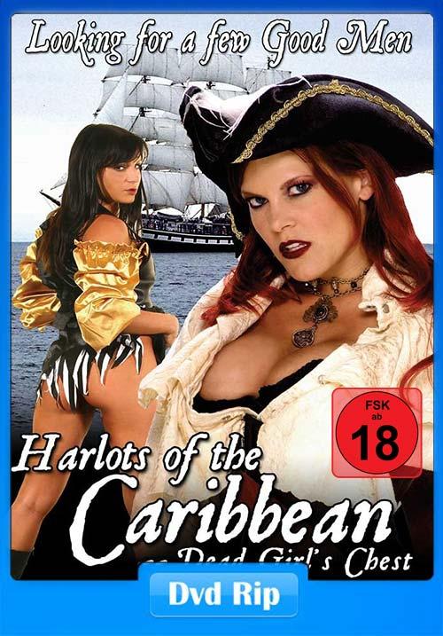 [18+] Bikini Pirates 2006 DVDRip | 480p 300MB | 100MB HEVC