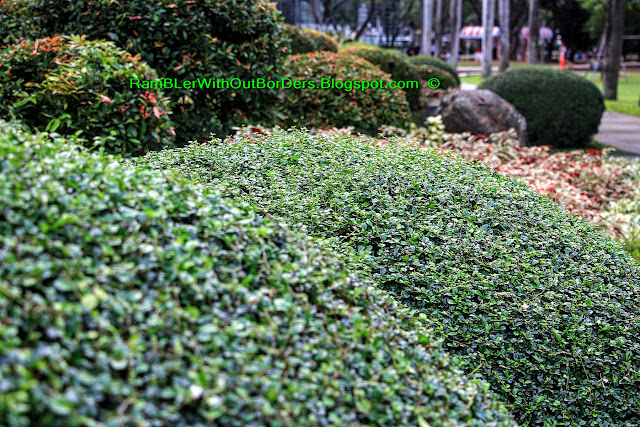 Topiary, Ayala Triangle Park, Makati, Manila, Philippines