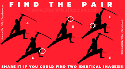 Answer of Find the Pair Visual Puzzle for Teens