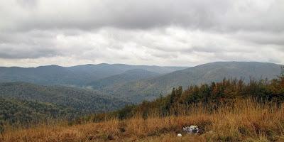 Panorama w kierunku doliny Roztoczki z wypiętrzenia przed Małym Jasłem.