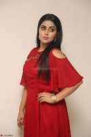Poorna in Maroon Dress at Rakshasi movie Press meet Cute Pics ~  Exclusive 162.JPG
