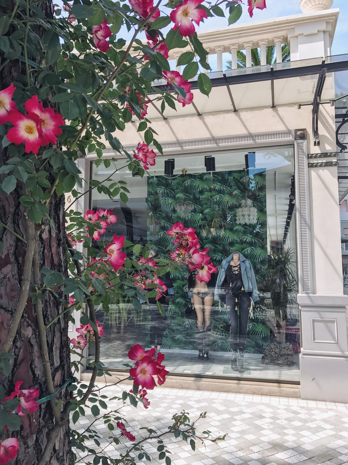 Roses in Bloom, Italy | with @coolchicstyle Instagram