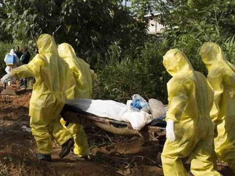 5 people die in fresh Lassa fever outbreak in Plateau State