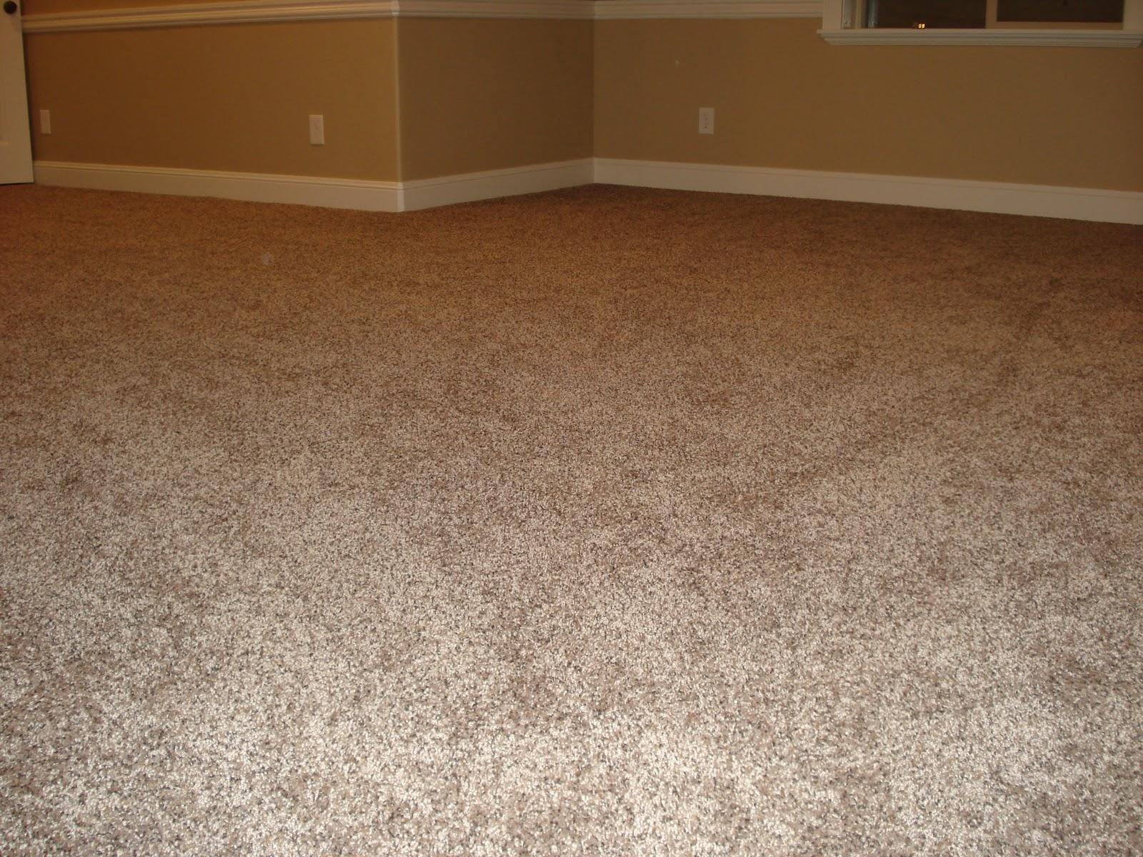 Do It Yourself Duo Basement Job 9 Carpet