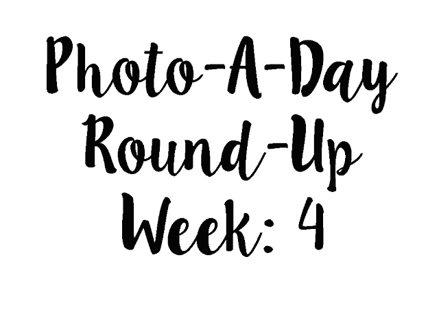 photo a day challenge week 4 round up!
