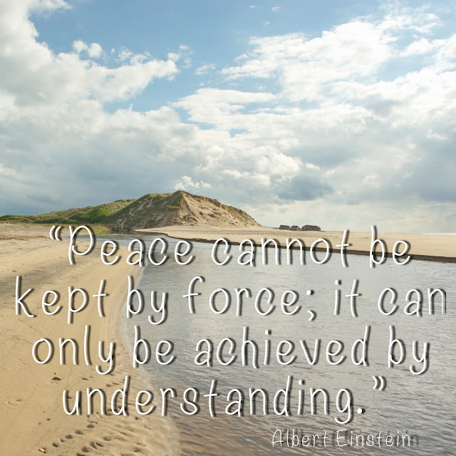 Peace cannot be kept by force; it can only be achieved by understanding. - Albert Einstein