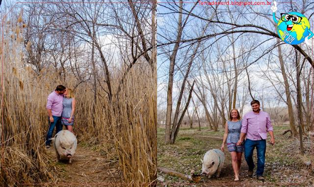 Bichos de estimação, Ziggy, Fotografia, Terra de Nerd