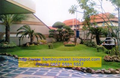 Flamboyanasri tukang taman Surabaya klasik