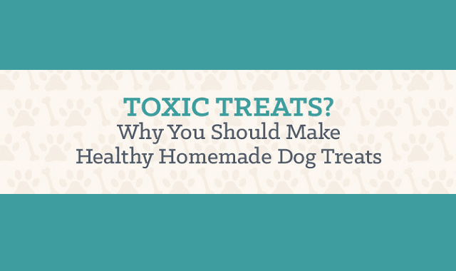 Why You Should Make Healthy Homemade Dog Treats