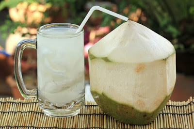 Young Coconut Drink Beverage Business Opportunities