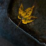 Ein Herbstspaziergang...