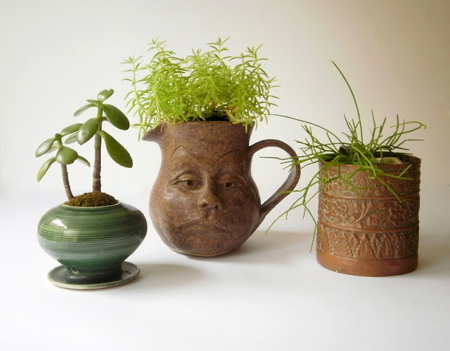 indoor plants in vintage planters of brass and pottery