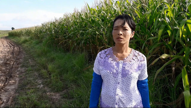 Image Attribute: Maw Maw Oo, 45, talks to reporters during a Reuters interview outside Yebu village in Shwenyaung township, Shan state, Myanmar in this still image taken from a August 26, 2016 video. REUTERS/Wa Lone