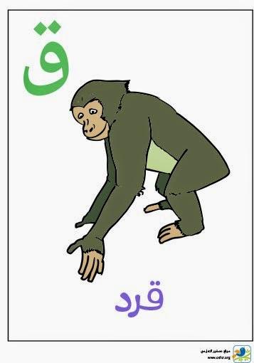 ملصق تعليمي للأطفال لتعليم حروف الهجاء (حرف القاف)