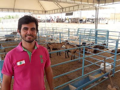 Fest Cabra de Porto da Folha reúne melhores animais da região Alto Sertão de SE