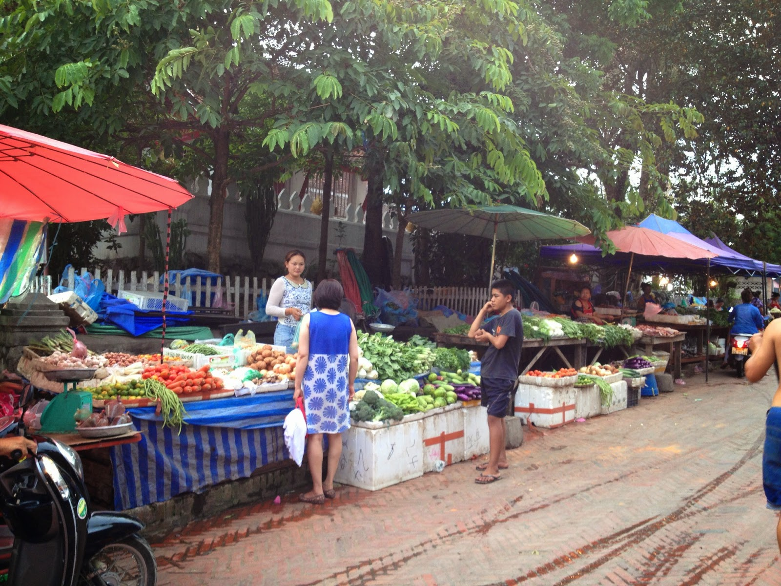 Luang Prabang - We visited a local outdoor market