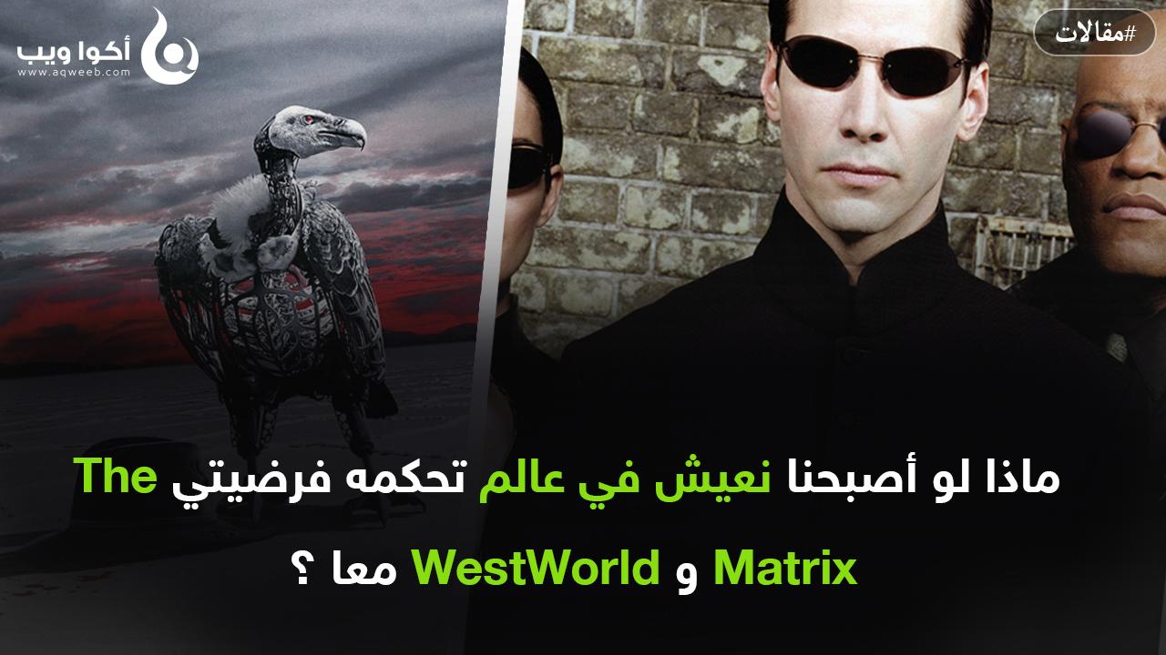 تقنيا : ماذا لو أصبحنا نعيش في عالم تحكمه فرضيتي The Matrix و WestWorld معا ؟